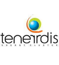Logo Tenerdis